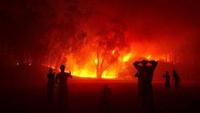 Sonoma Fire by Joshua Burke (Age: 14)