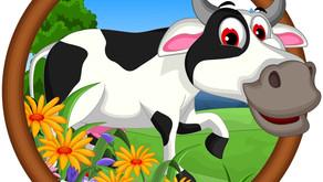Why Do Cows Yell Moo? by Malek Rashad (Age:10)
