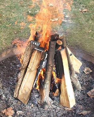 campfire wood.JPG
