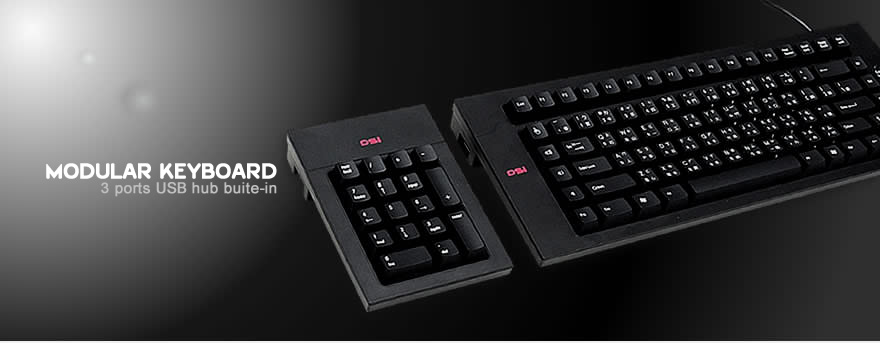 DSI Modular Keyboard