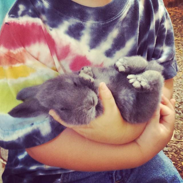 Gentle hands :)