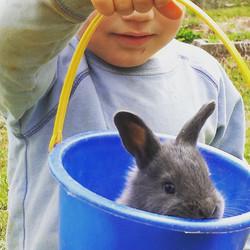 A farmer and his bunny!