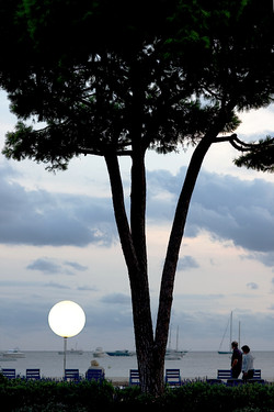 cannes, instead moon