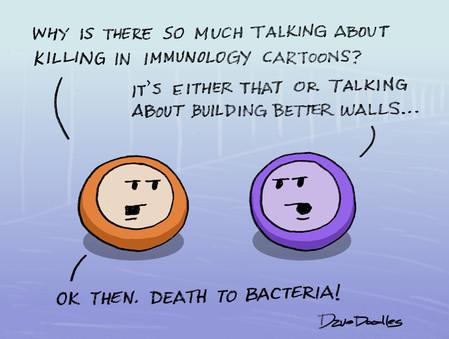 Building Better Walls