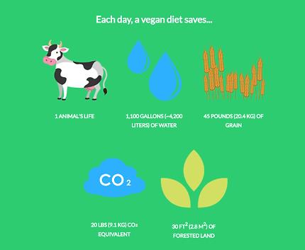 Vegan diet.png
