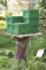 Foto_MiniPlus_tree.jpg