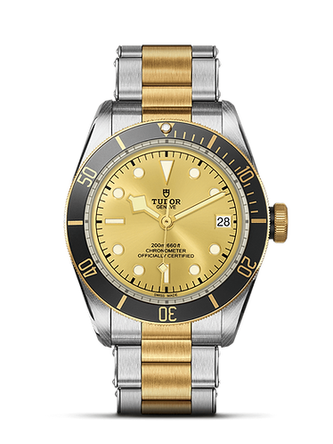 Tudor Black Bay S&G Steel and Yellow Gold