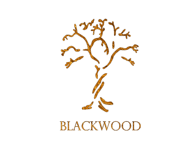 Blackwood Studios logo Los Angeles Recording Studio