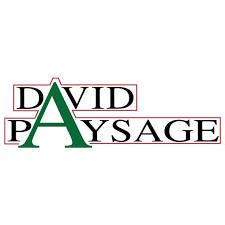 David Paysage
