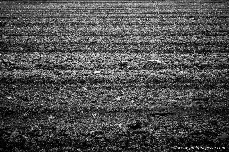 De pierres et de terre