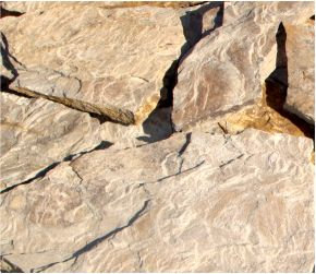 Песчаник дракон серый