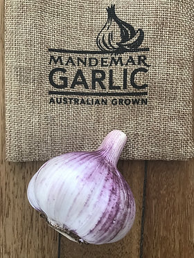 Monaro Purple Garlic