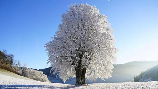 xvers-un-hiver-bien-enneige.jpg.pagespee