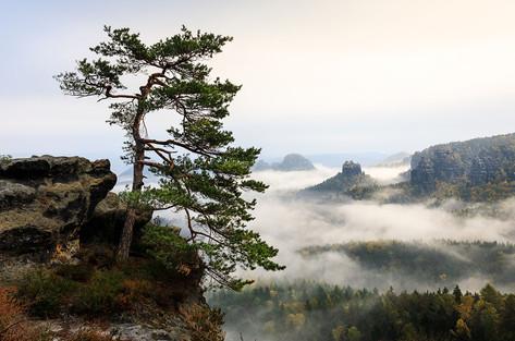 Elbsandsteingebirge, Am Gleitmannshorn