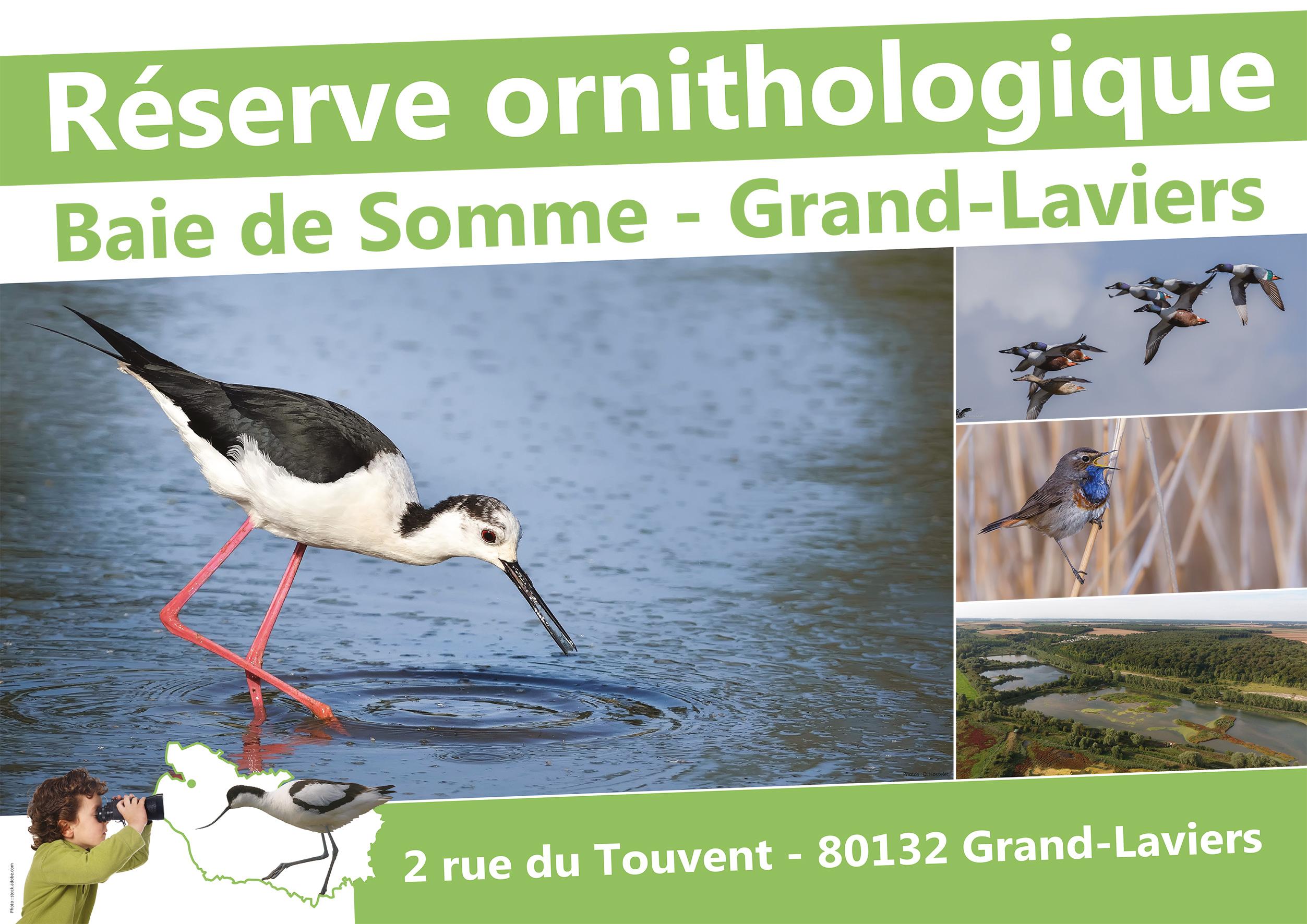 Grand-Laviers