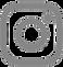 insat_logo-removebg-preview.png