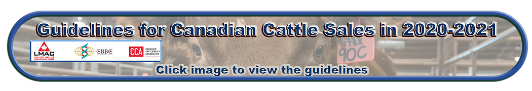 Cattle Sales Guidelines Button.png