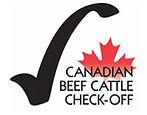 canadian-beef-cattle.jpg