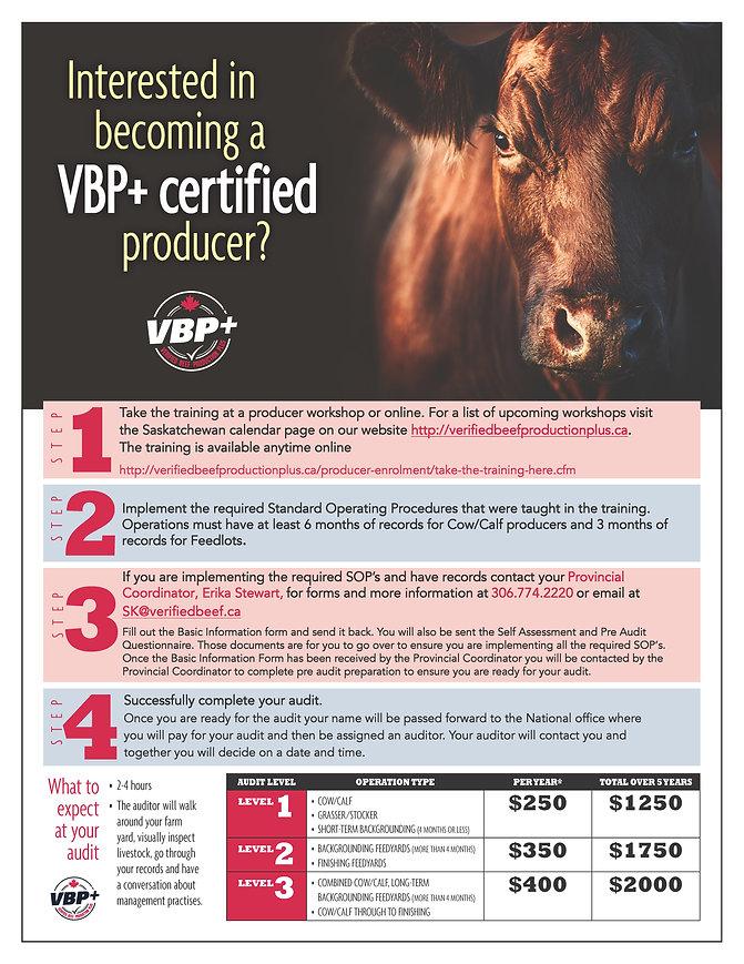 VBP-steps_infographic-JPG.jpg