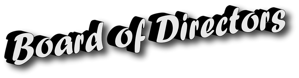 Board of DIrectirs header.png