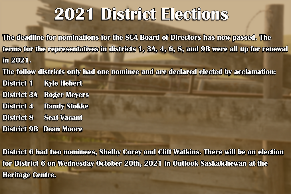 Nominations Graphic 2021_b.png