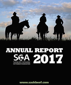 2017 SCA Annual Report Cover Page_Page_0