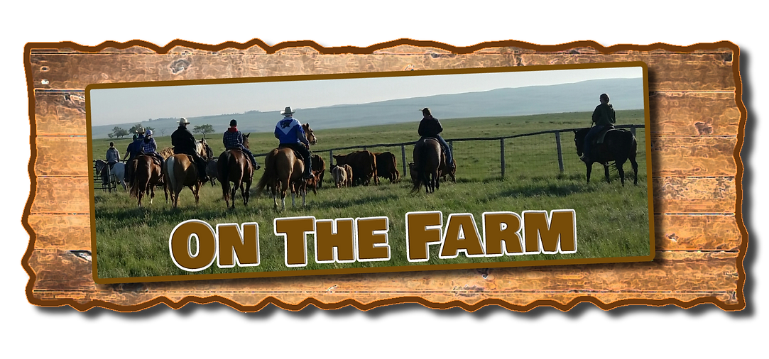 On The Farm Header.png