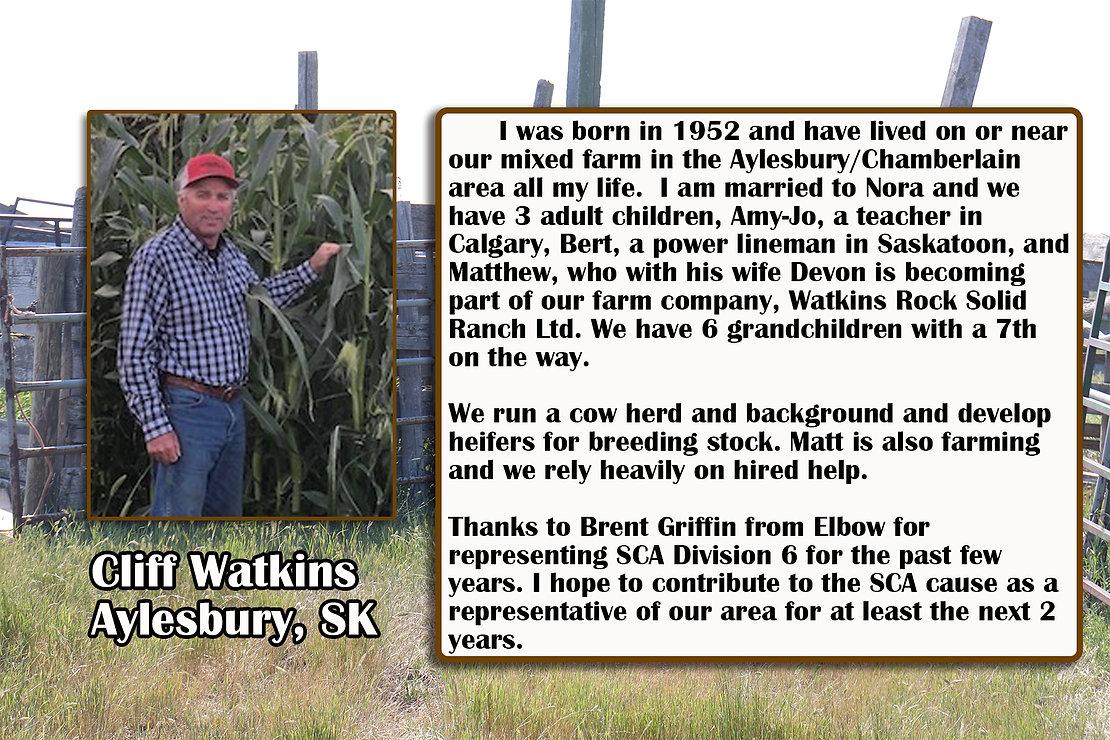 Cliff Watkins Profile.jpg