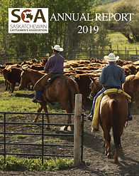 sca_2019_annual_report-Cover Page_Page_0