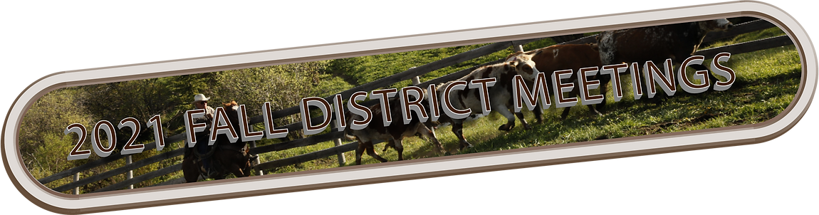 2021 District Meeting Title.png