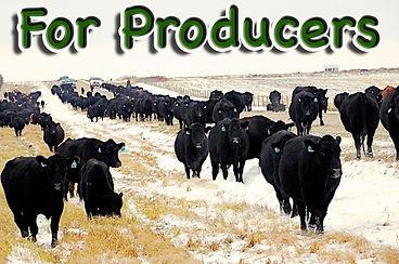 Producers Icon home page Nov 2020.jpg