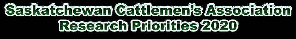 SCA Research Priorities 2020 header.png