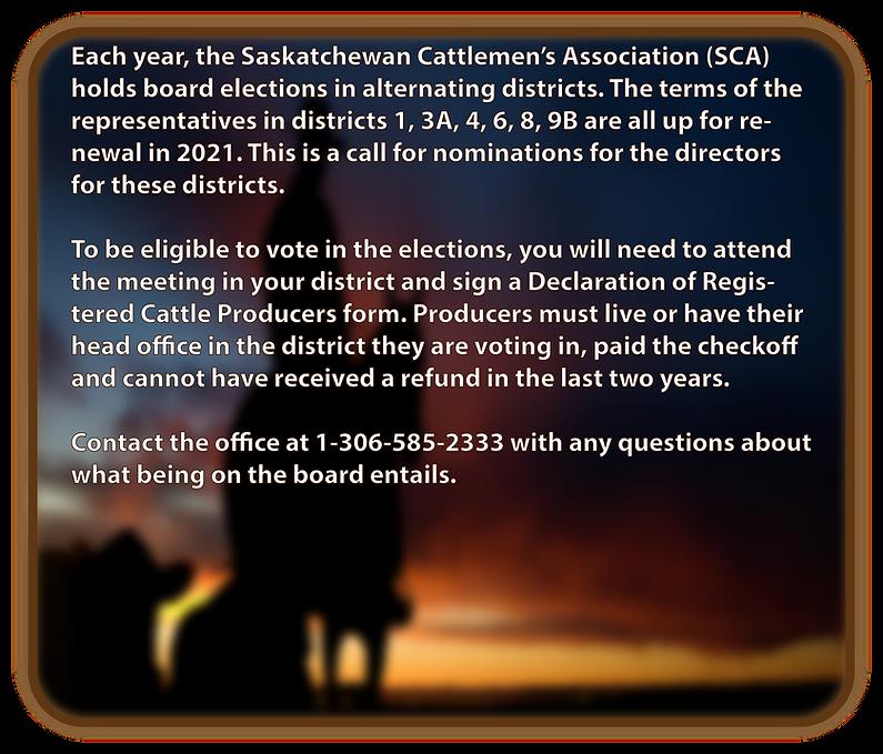 Election announcement.png