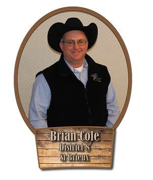 Brian Cole DIstrict 8.png