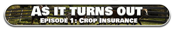 Episode 1 Crop Insurance.png