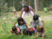 semillas 5.jpg