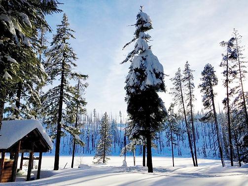 snowy camp 4.jpg