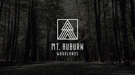 Mt. Auburn Woodsland Style Guide-01.jpg