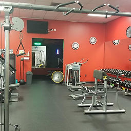 gym free weights.jpg