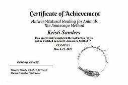 Level 1 equine massage certifiation