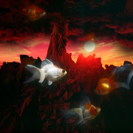 Apocalypse Aquarium (Etude no. I) (2020)