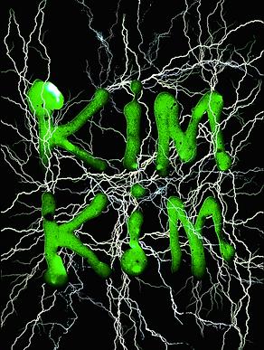 kim kim_slime logo.png