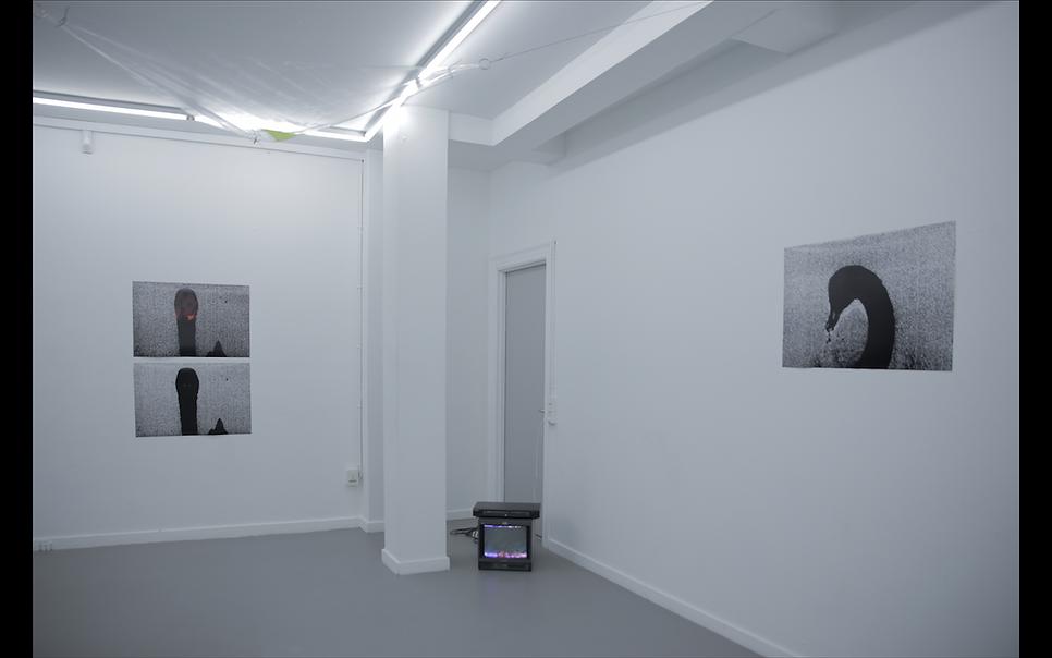 Kim Richard Adler Mejdahl_The Swan Room_