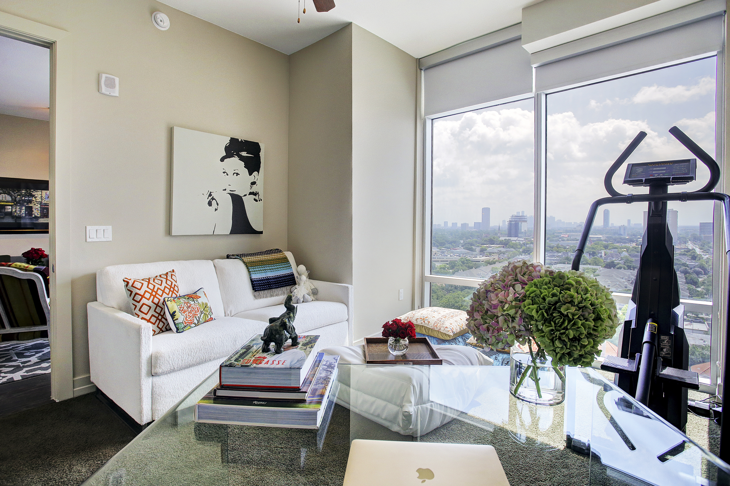 River Oaks High Rise - Interior Decorating and Space Planning - Down Sizing