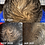 Thumbnail: ROHAIR GROWTH (Hair Growth Oil)