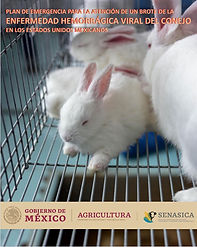 RHDV2 emergency plan cover mexico.jpg