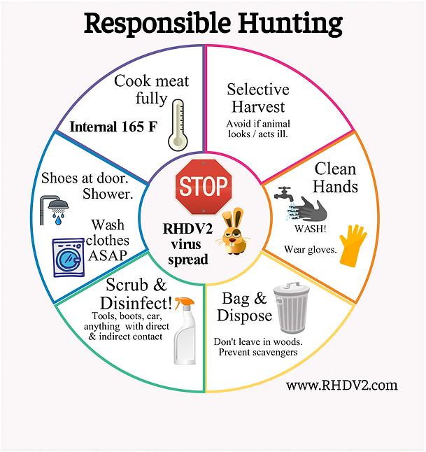 Hunters RHDV2.png