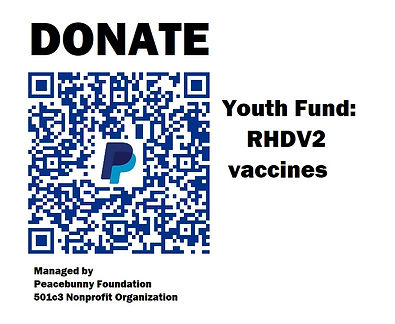 QR CODE PBF Youth Fund.jpg