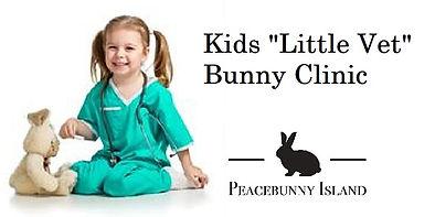 Little vet banner.jpg