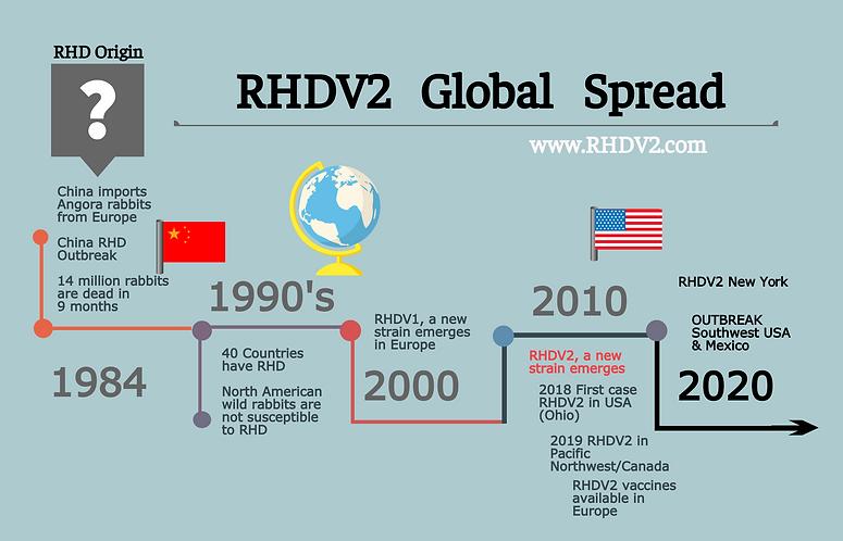 RHDV2 Timeline final.png